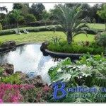 Home landscape plans 300x250 150x150 - http://www.tamaraweaver.com/home-landscape-plans-300x250-150x150/