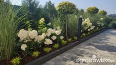 Front House Landscaping, Backyard Garden Landscape, Backyard Pool Landscaping, Farmhouse Landscaping, House Landscape, Landscape Design, Garden Paths, Privacy Landscaping, Garden Mum