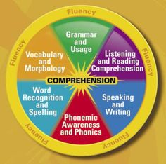 Language!  Reading Intervention