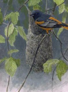Artwork Search Results | Robert Bateman Centre