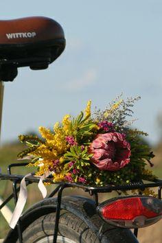 kwiaty www.floreon.pl
