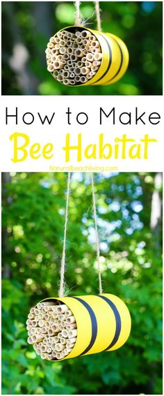 How to Make a Mason Bee Habitat Perfect Life Cycle of a Bee Activities Bee Theme Hands on activities DIY Bee Homes Honey Bee life cycle Bee unit Study Bee Activities, Nature Activities, Honey Bee Life Cycle, Mason Bees, Mason Jar, Bee House, Save The Bees, Diy Garden Decor, Kids Garden Crafts