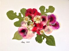 TAKEN - Pressed flower art with bright green leaves from Romania, and geraniums from Alaska.