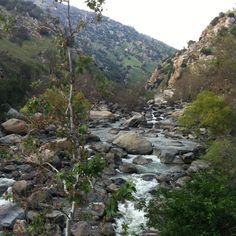 River near Bakersfield,Ca