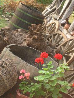 wooden barrels...
