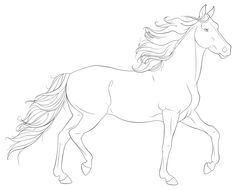 desenhos cavalos selvagens - Pesquisa Google