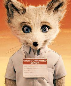 Fantastic Mr Fox - the adorable Kristofferson!