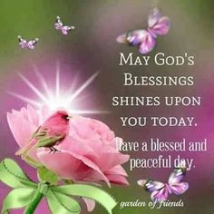 May God's Blessings Shine Upon You Today And Everyday morning good morning morning quotes good morning quotes good morning greetings Good Morning Sister, Good Morning Prayer, Good Morning Flowers, Morning Blessings, Good Morning Messages, Morning Prayers, Good Morning Good Night, Morning Wish, Good Morning Images