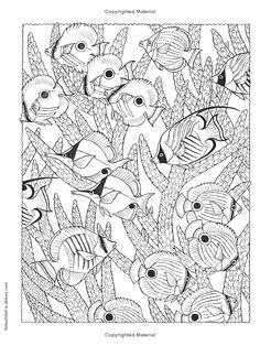 Creative Haven NatureScapes Coloring Book (Creative Haven Coloring Books): Patricia J. Wynne, Creative Haven: 9780486494500: Amazon.com: Books