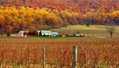 Breaux winery
