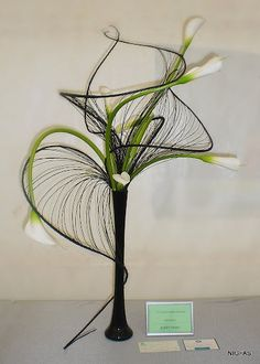Ikebana. Like the black curly branches, such a good contrast with the callas. Add a peacock feather just for fun.