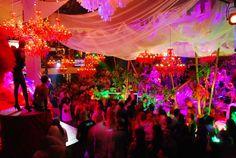 #zimmermanngoesto Ibiza - pacha nightclub
