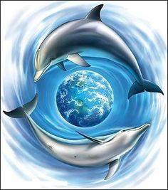 water en dolfijn.jpg
