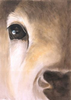 Deer watercolor painting. Deer head. Original by madareli on Etsy, $50.00