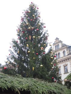The epicentre - The Christmas Tree at the centre of Thurn and Taxis Palace Regensberg