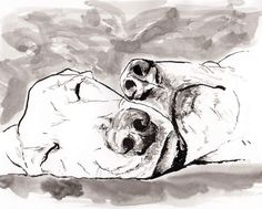 Better - Indian ink painting of two dogs sleeping -2012