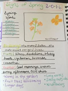 Once a Month Nature Journal Project - Draw Parts. Draw a single flower to show the details. Spring Sign, Nature Journal, Journal Pages, Homeschooling, Bullet Journal, English, Draw, Education, Flower