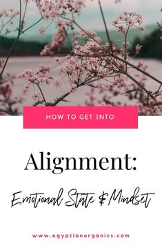 The law of attraction says that we attract what we are, think, and feel. If you have high energy, you attract high energy. If you have low energy, you attract low energy. Brain Tricks, Mind Tricks, Feeling Blah, Kate Blog, Law Of Attraction Tips, Sound Healing, Good Mental Health, Motivational Quotes For Working Out, Neighbor Gifts