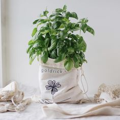 How do you reuse your leftover packaging, we hope for all of our packaging to have another life once they have reached our customers. There are so many creative DIY's online. I have found a great article inspiring me to brighten up my little herb plant with a fabric planter. Would love to hear what you guys come up with! 💚 Laundry Pegs, Wool Dryer Balls, Beeswax Candles, Drying Herbs, Together We Can, Natural Living, Reuse, Creative, Handmade