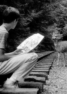 """""""I never spoke or wrote about it until just now."""" Gordie - Stand by Me 80s Movies, Good Movies, 1980s Films, Stand By Me Gordie, Gordie Lachance, Stephen King Quotes, Dry Sense Of Humor, Wil Wheaton, King Book"""