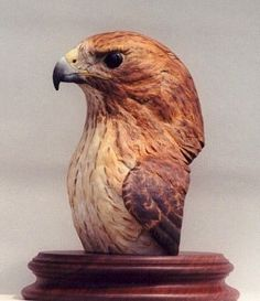 Red-tailed Hawk Bust SOLD