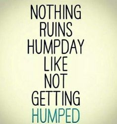Nothing ruins humpday like not getting humped.