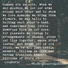 Falling in love beneath the stars