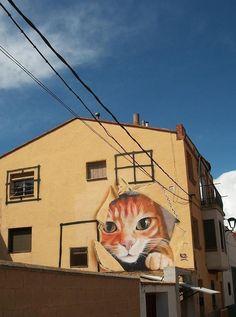 cat mural in Zaragoza