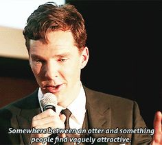 I've never been sexually attracted to a otter, Ben