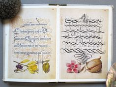 The Art of the Pen: Calligraphy from the Court of the Emperor Rudolf II