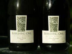 Burrowing Owl Burrowing Owl, Pinot Gris, Bottle, Drinks, Wine, Drinking, Beverages, Flask, Drink