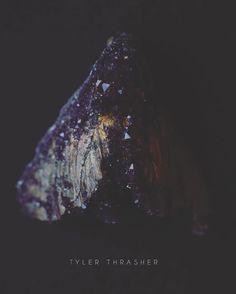 crystalized dead head moth by tyler thrasher
