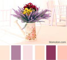 Paletas de colores para combinar...