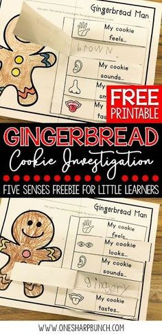 Investigate gingerbread cookies using this FREE gingerbread man five senses activity. perfect for Christmas in the classroom! Also great for practicing adjectives! Five Senses Kindergarten, Senses Preschool, Senses Activities, 1st Grade Activities, Writing Activities, Preschool Activities, Preschool Kindergarten, Winter Activities, 1st Grade Science