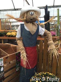 33 Cool Scarecrow Ideas -                                                       …