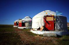 house for mongolia