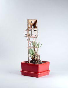 Confira Estas Miniaturas De Casas Na Árvore
