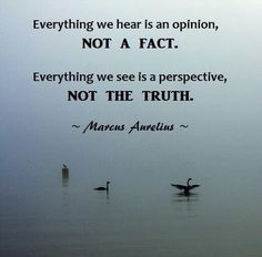 #opinions not #facts | #perspective not #truth