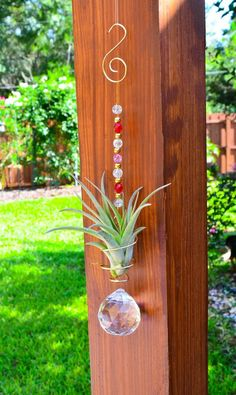 Love this idea for air plants with beads for display.