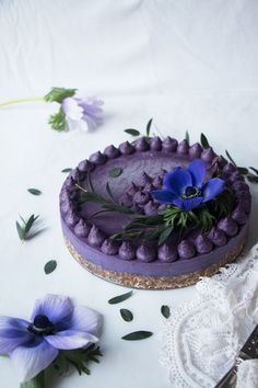 foods and desserts Wild Blueberry Vegan Cheesecake Recipe. Delicious vegan cheesecake recipe with almond amaranth tahini crust and creamy cashew wild blueberry filling. Desserts Crus, Köstliche Desserts, Dessert Recipes, Dessert Healthy, Healthy Cake, Blueberry Cheesecake, Cheesecake Recipes, Blueberry Tarts, Raw Vegan Cheesecake