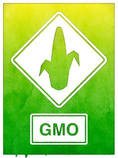 To what extent is the industrial #Monsanto #GMO corn-grown-for-ethanol paradigm responsible for the Gulf of Mexico dead zone? http://www.huffingtonpost.com/elizabeth-kucinich/the-killing-fields-indust_b_3678515.html