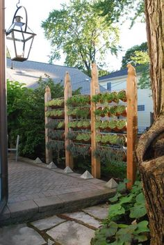 privacy screen: cedar posts with hand carved birds + galvanized steel rods + succulents in clay pots
