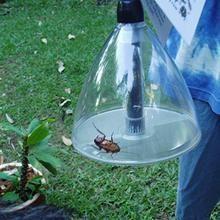 Spider Catcher – Rainbow Cool Stuff Large Spiders, Catcher, Rainbow, Cool Stuff, Rain Bow, Rainbows
