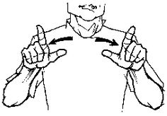 """big"" American Sign Language (ASL)"