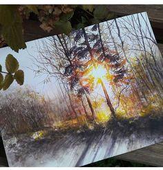 Fall forest sunrise