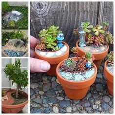 mini garden F