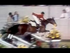 Olympic Equestrian Show Jumping Olympic Equestrian, Horse Videos, Show Jumping, Olympics, Horses, Hunter Jumper, Horse, Words