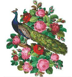 Vintage berlin woolwork cross stitch pattern Peacock with Cross Stitch Bird, Cross Stitch Flowers, Cross Stitch Designs, Cross Stitch Embroidery, Cross Stitch Patterns, Cross Stitching, Vintage Cross Stitches, Vintage Embroidery, Embroidery Patterns