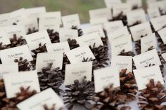 Such a great DIY wedding idea - perfect for name tags and throwing in the fire after to keep warm!