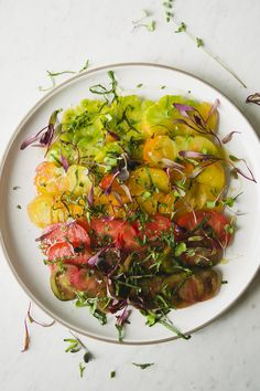 HEIRLOOM TOMATO SALA